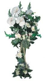 Diyarbakır internetten çiçek satışı  antoryumlarin büyüsü özel