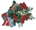 Diyarbakır çiçek yolla  12 adet Kirmizi gül buketi