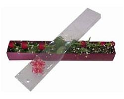 Diyarbakır ucuz çiçek gönder   6 adet kirmizi gül kutu içinde