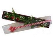 Diyarbakır kaliteli taze ve ucuz çiçekler  3 adet gül.kutu yaldizlidir.