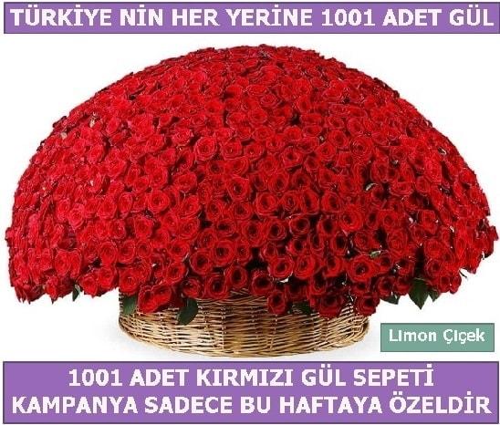 1001 Adet kırmızı gül Bu haftaya özel  Diyarbakır cicekciler , cicek siparisi