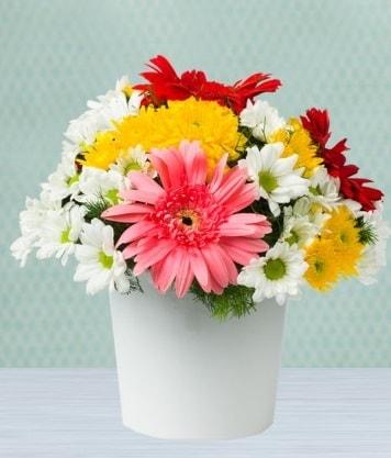 Seramik Vazoda Gelbera ve Papatya  Diyarbakır anneler günü çiçek yolla