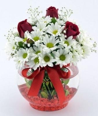 Fanusta 3 Gül ve Papatya  Diyarbakır online çiçekçi , çiçek siparişi