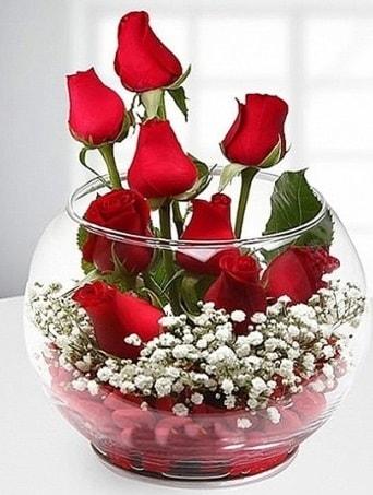Kırmızı Mutluluk fanusta 9 kırmızı gül  Diyarbakır yurtiçi ve yurtdışı çiçek siparişi