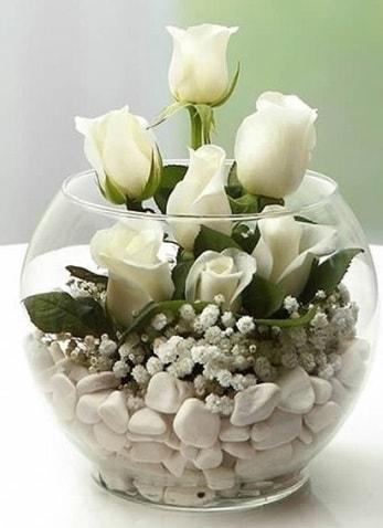 Beyaz Mutluluk 9 beyaz gül fanusta  Diyarbakır yurtiçi ve yurtdışı çiçek siparişi