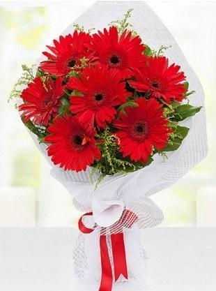 Kırmızı Gelbera Buketi  Diyarbakır İnternetten çiçek siparişi