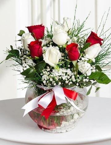 Aşk Küresi  5 beyaz 5 kırmızı gül fanusta  Diyarbakır online çiçekçi , çiçek siparişi