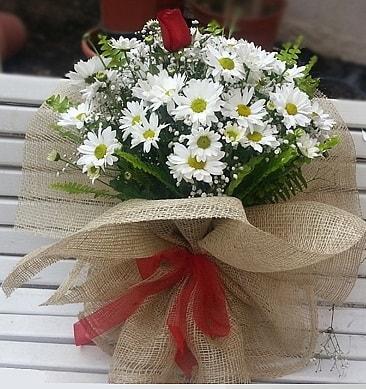Papatya 1 adet kırmızı gül buketi  Diyarbakır çiçek yolla , çiçek gönder , çiçekçi