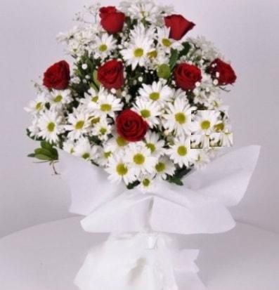 7 adet kırmızı gül ve papatyalar krizantem  Diyarbakır online çiçekçi , çiçek siparişi