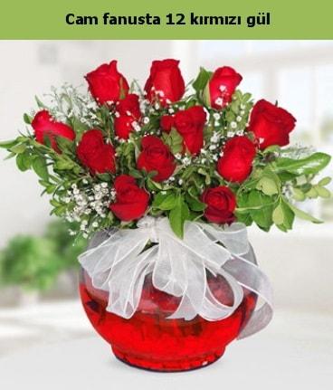 Cam içerisinde 12 adet kırmızı gül  Diyarbakır online çiçekçi , çiçek siparişi