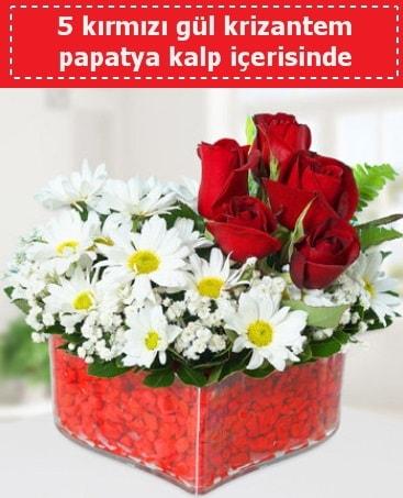 mika kalp içerisinde 5 kırmızı gül papatya  Diyarbakır anneler günü çiçek yolla