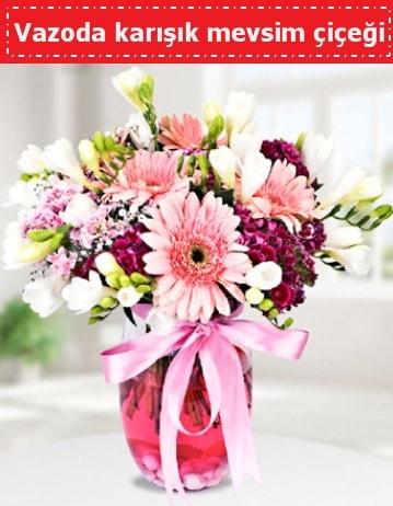 Vazoda karışık mevsim çiçeği  Diyarbakır çiçek servisi , çiçekçi adresleri