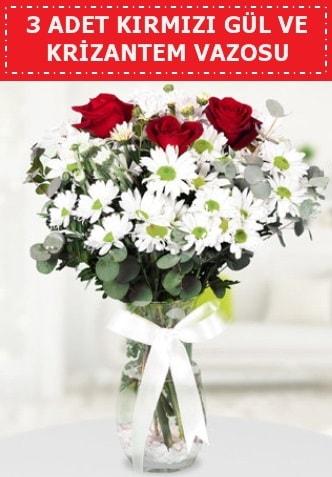 3 kırmızı gül ve camda krizantem çiçekleri  Diyarbakır anneler günü çiçek yolla